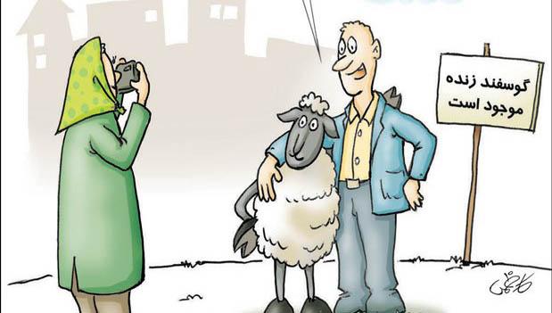 عکس یادگاری با گوسفند به دلیل گرانی! + عکس