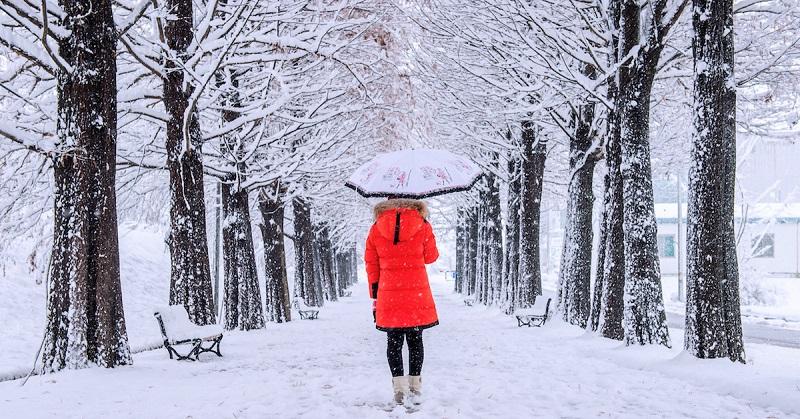 6 روش براي گذر سلامت از زمستان و بهبود سريعتر سرماخوردگي