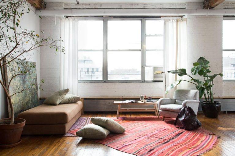 بهترین گیاهان برای نگهداری در منزل