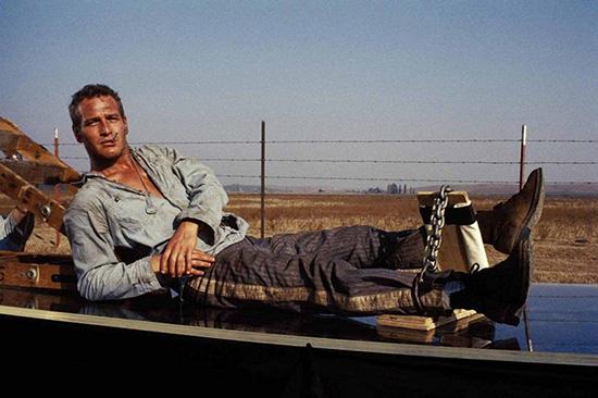 پل نیومن؛ ستارهای که به اسکار رودست زد+تصاویر