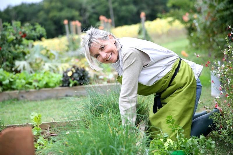 مزایای سلامتی  باغبانی کردن در سنین بالا