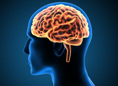 بازسازی سلول های مغز
