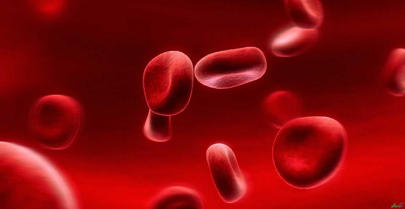 ارتباط غلظت خون با ميزان هموگلوبين