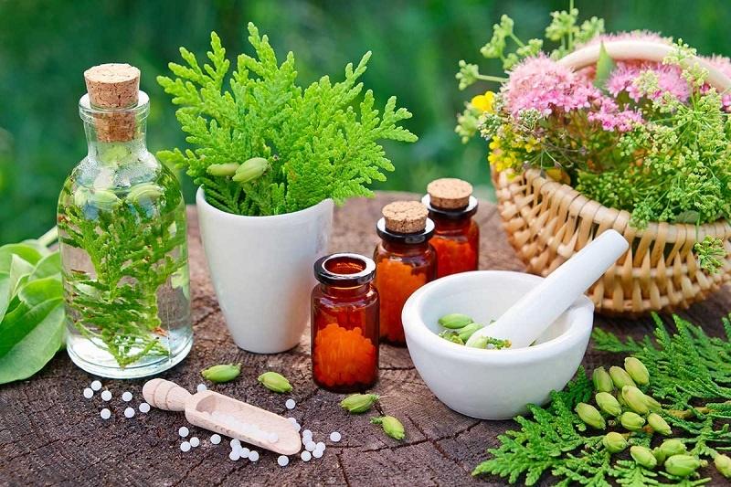 گیاهان شگفت انگیز برای پیشگیری و بهبودسرطان