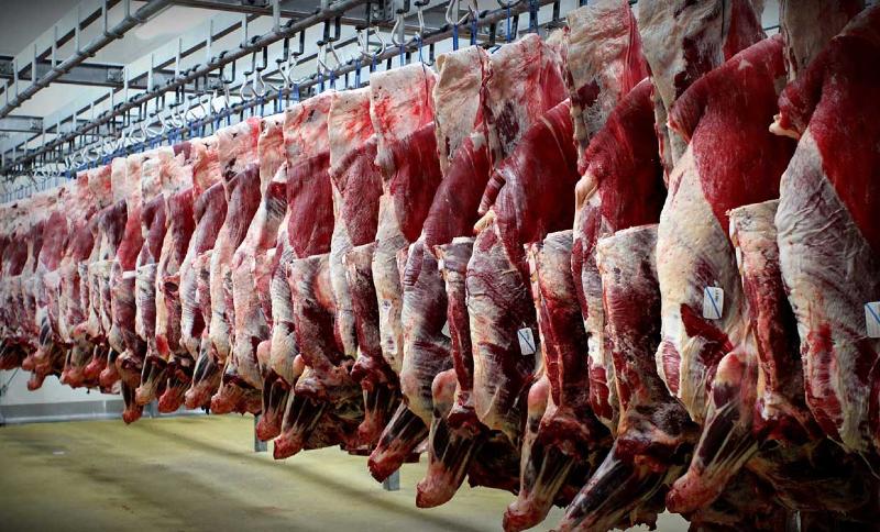کشف بیش از ۱۶ هزار کیلو گوشت قرمز احتکار شده