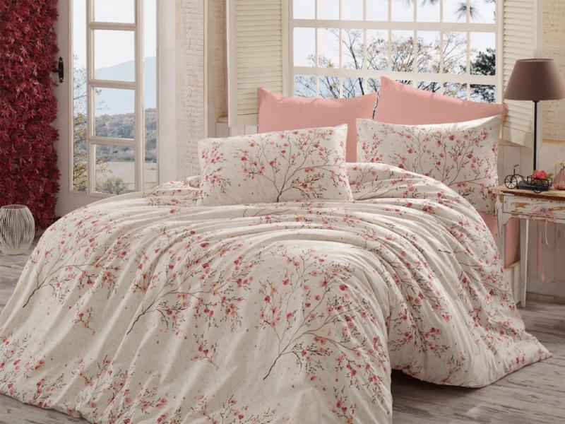 عوامل بیماری زای موجود در رختخواب 1
