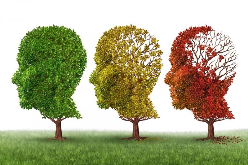 کاهش خطر ابتلا به آلزايمر با روشي باورنکردني
