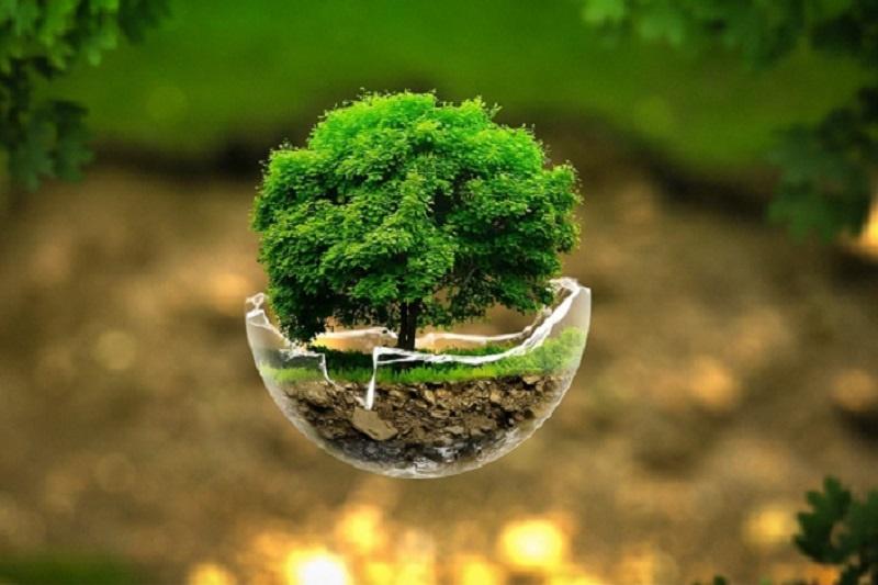 دخالت زنان در سیاستگذاری موجب حفظ محیط زیست میشود