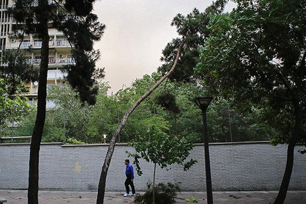 هشدار هواشناسی نسبت به احتمال وزش باد شدید در برخی استانها