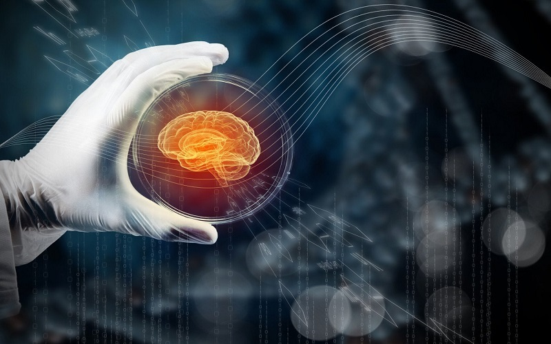 چگونه مغزمان را جوان نگه داریم؟
