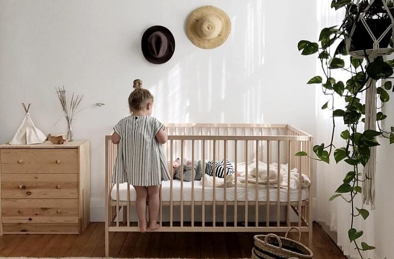 برای اتاق کودکان چه گیاهی را انتخاب کنیم؟