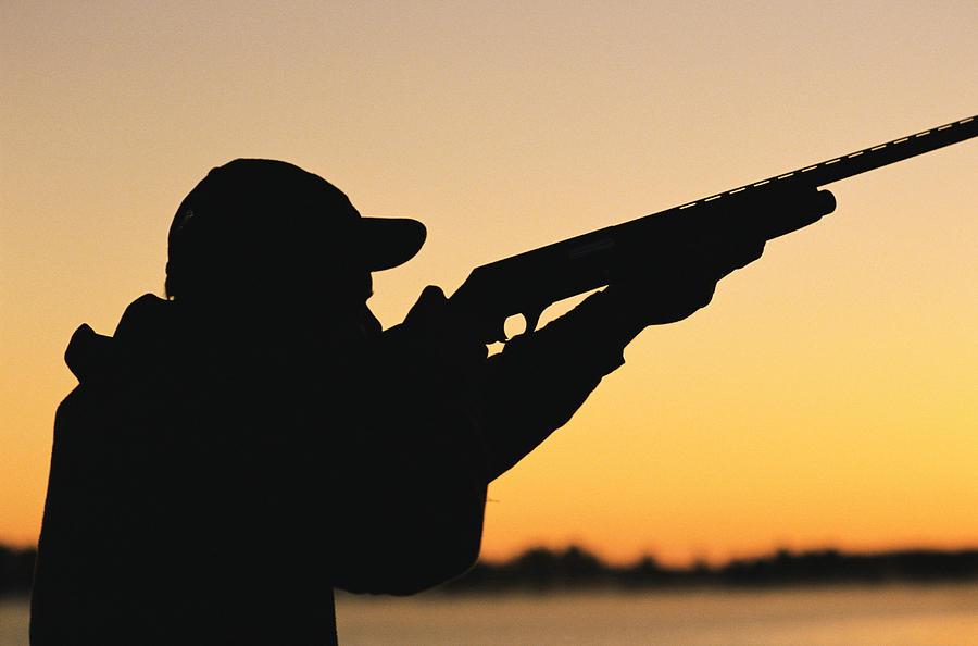 ترفند برخی اعراب ثروتمند برای تفریح بیشتر و شکار پرنده نادر
