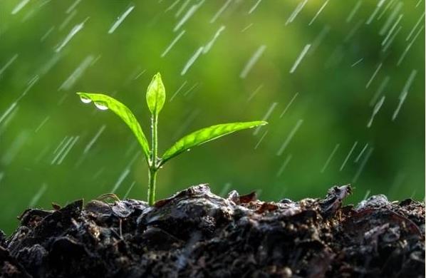 بارش شدید باران در ۹ استان