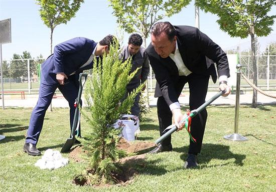 درختکاری ویلموتس در اولین حضور در ایران + عکس