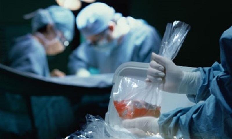 انجام موفقیت آمیز اولین پیوند مغز استخوان در بیمار مبتلا به HIV