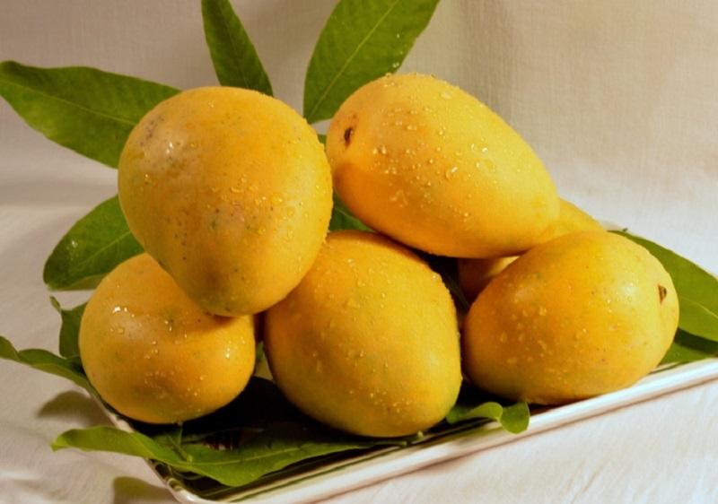 اگر التهاب روده دارید این میوه را بخورید