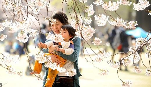 5 قانون تربیت کودک که باید از ژاپنی ها یاد بگیریم