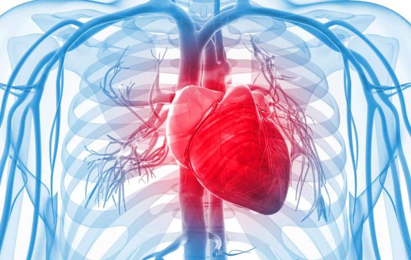 پیشگیری از مرگ زودهنگام قلبی عروقی