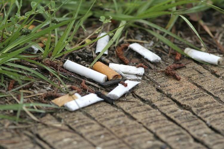 تهسیگار؛ آلودگی پلاستیکی فراموششده