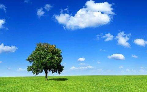 پیش بینی آسمان صاف برای اکثر مناطق کشور