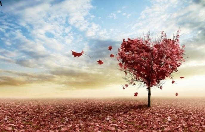 هفت عاملی که مانع قبولی اعمال می شود