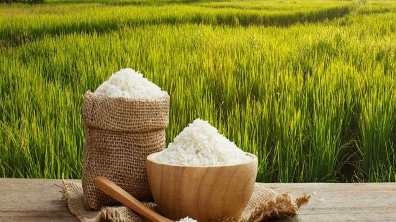 بهترین روش های نگهداری برنج در خانه