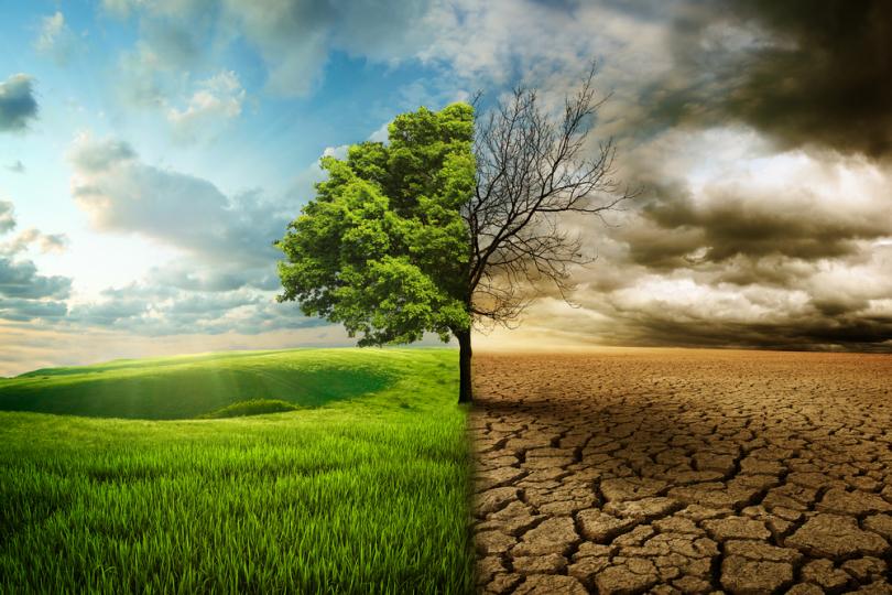 قربانیان اصلی تغییر اقلیم