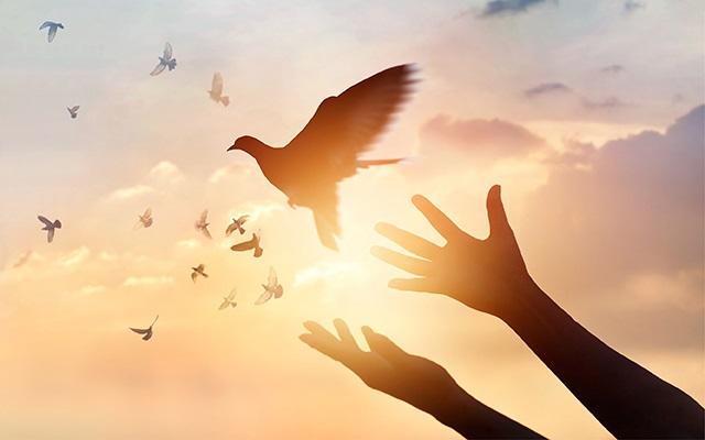 رسول اکرم(ص): هر چشمی در روز قیامت گریان است، مگر سه دیده