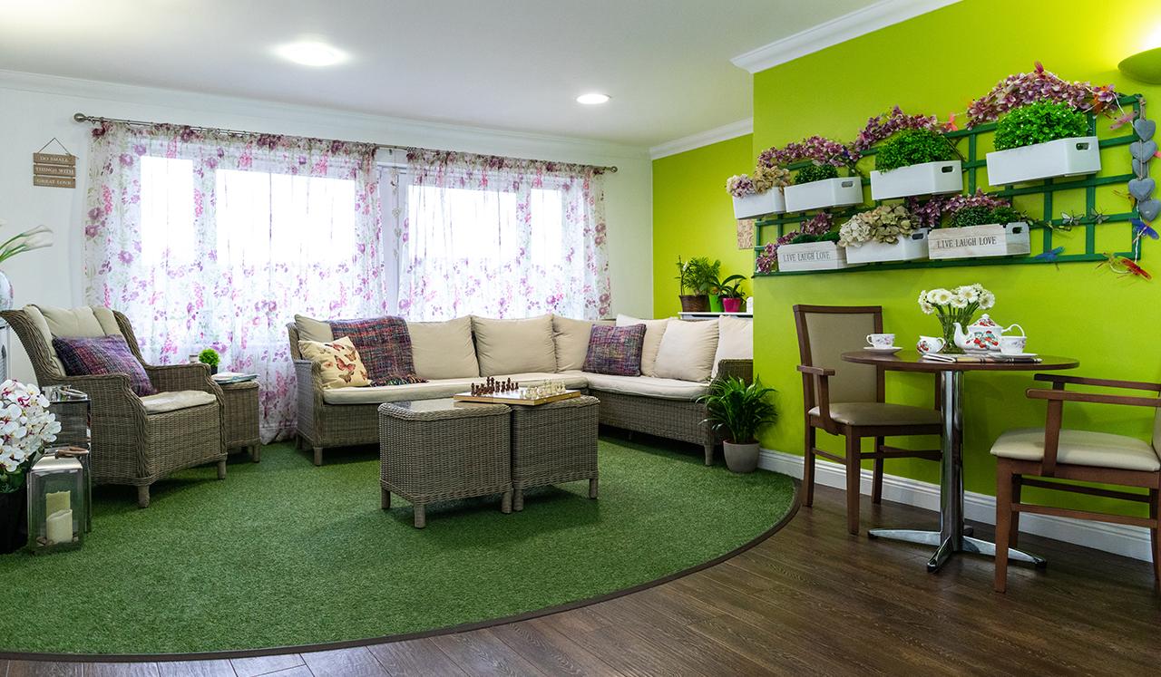 ۵ گیاه مناسب برای آپارتمان