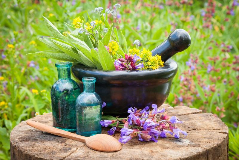 فواید گیاهان دارویی را بشناسیم