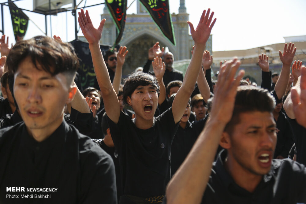 عزاداری افغانستانی ها در حرم حضرت معصومه(س) + عکس
