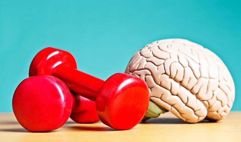 ورزشی که مغز را جوان نگه می دارد