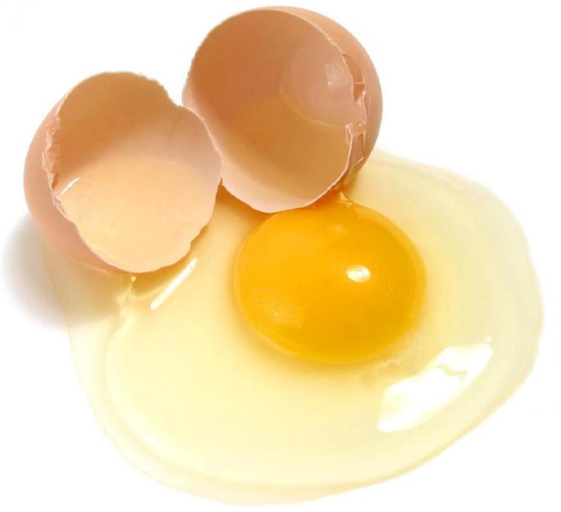 تخم مرغ مفيد است يا مضر؟