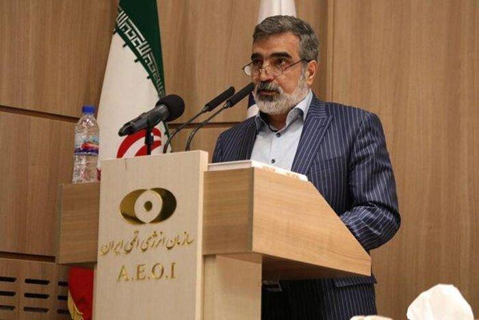 کمالوندی: گام های بعدی تهران درصورت عدم اقدام طرفهای مقابل در راه است