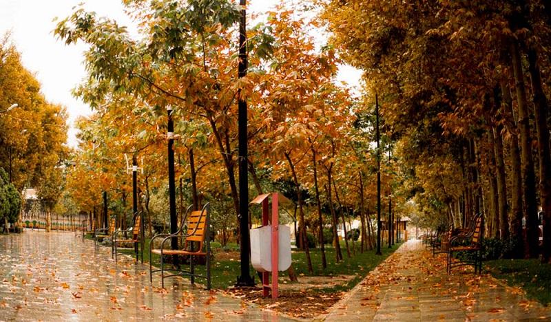 بارش باران در تهران و چند استان دیگر
