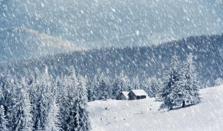بارش نخستین برف پاییزی