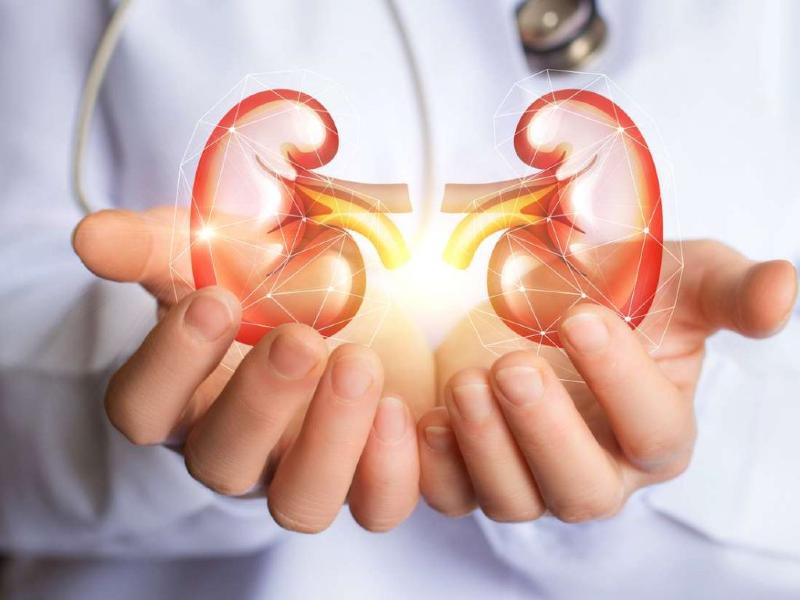 نارسایی کلیه چیست؟ از علائم و عوارض تا راه های تشخیص و درمان