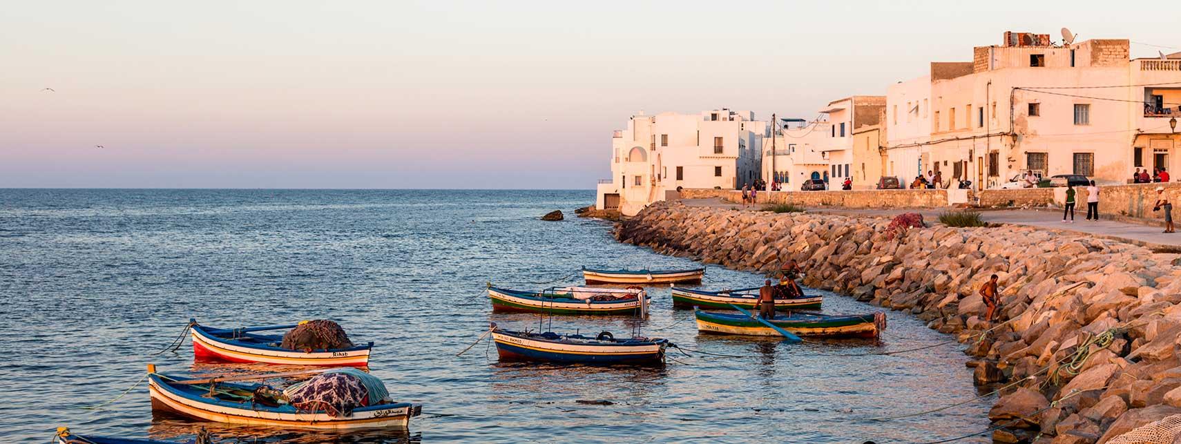 آموزش سالاد مِشویا یکی از پیش غذاهای  سالم ، مقوی و محبوب رایج در کشور تونس، ایتالیا و یونان