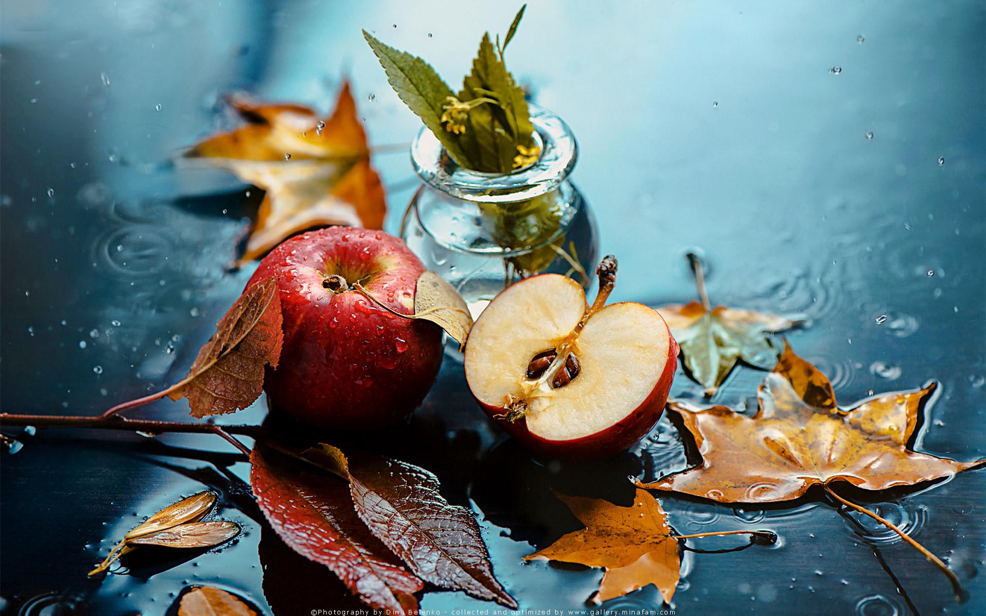 برخی پرهیزات غذایی ضروری پاییز