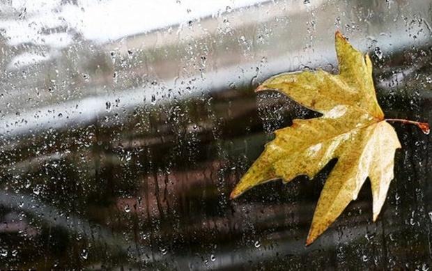 هشدار سازمان هواشناسی نسبت به تشدید بارشها در کشور