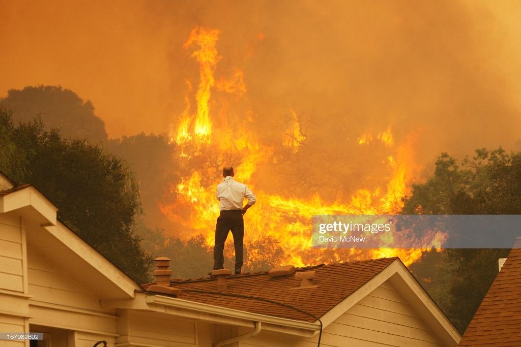 حیوانات کباب شده و ماشین های سوخته در جهنم کالیفرنیا + عکس