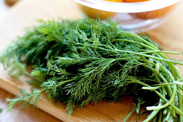 سبزی هایی که برای استخوان مفید است