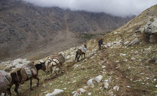 رنج کولبران در مرز ایران و اقلیم کردستان + عکس