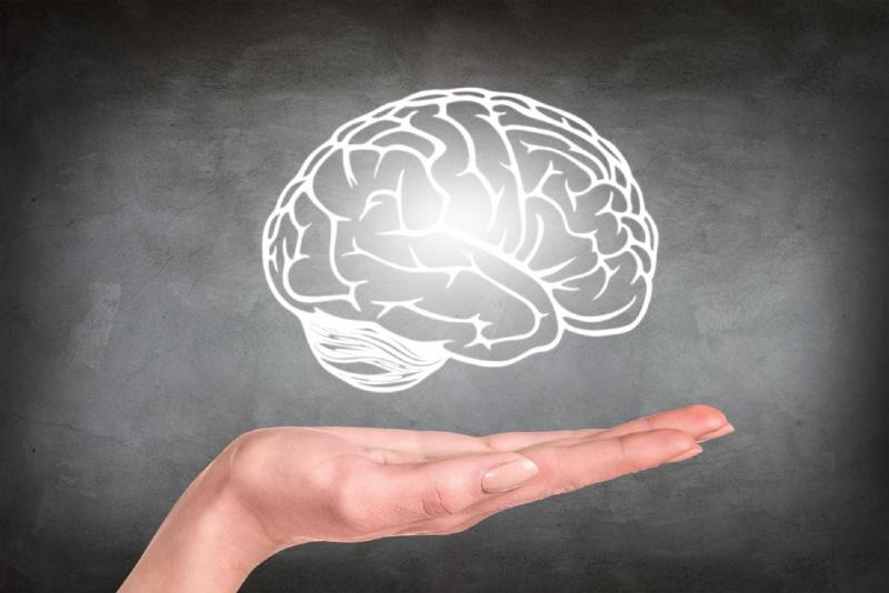 واقعیت هایی درباره کالری سوزی فعالیت های مغزی