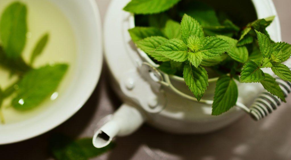 گیاهی که به پوست شما درخشش طبیعی میبخشد
