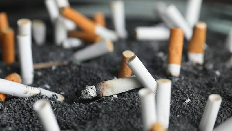 سیگارها پس از خاموش شدن چه بلایی سر طبیعت میآورند؟