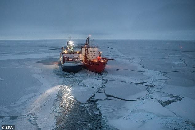 گیر افتادن در قطب جنوب به دلیل کروناویروس! + عکس
