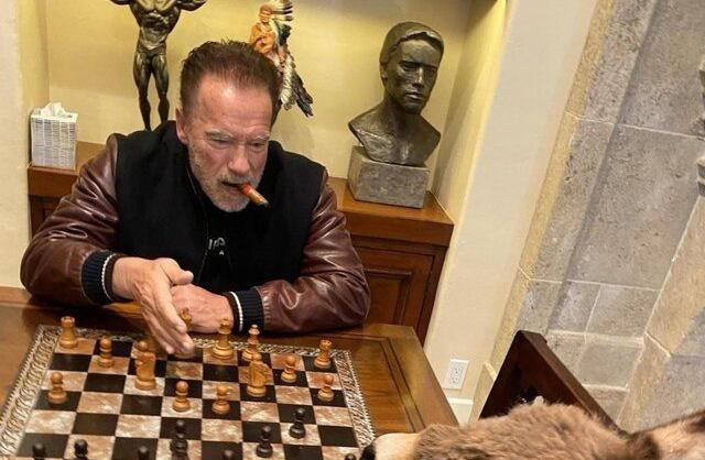 شطرنج بازی کردن آرنولد با الاغش در قرنطینه! + عکس