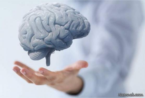 ۶ غذای شگفتانگیز برای تقویت عملکرد مغز با افزایش سن