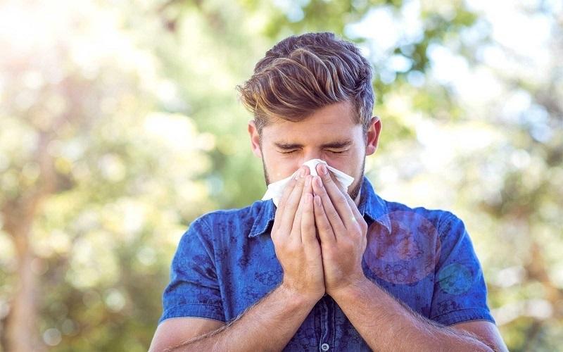 با آنتی هیستامینهای طبیعی بر بهبود آلرژی آشنا شوید